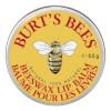 Burt's Bees Beeswax Lip Balm Tin: Image 1