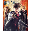 Harry Potter 7 Trio - Mini Poster - 40 x 50cm: Image 1