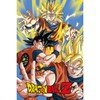 Dragon Ball Z Goku - 24 x 36 Inches Maxi Poster: Image 1