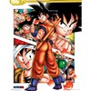 Dragon Ball Z Collage - 16 x 20 Inches Mini Poster: Image 1