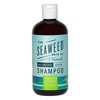 The Seaweed Bath Co. Argan Shampoo 360ml - Eucalyptus & Peppermint: Image 1