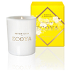 ECOYA Botanicals Evolution Banksia and Bergamot Candle - Mini Botanic Jar: Image 1