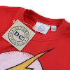DC Comics Boys' The Flash Distress Logo T-Shirt - Red: Image 2