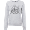Harry Potter Draco Dormiens Nunquam Titillandus Women's Grey Sweatshirt: Image 1