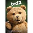 Ted 2 Close Up - Maxi Poster - 61 x 91.5cm