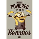 Despicable Me Powered By Bananas - 24 x 36 Inches Maxi Poster