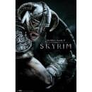 Skyrim Attack Maxi Poster - 61 x 91.5cm