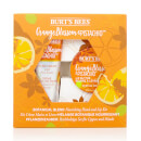 BURT'S BEES – BOTANICAL BLEND NOURISHING HAND AND LIP KIT - ORANGE BLOSSOM & PISTACHIO – 13,95 €