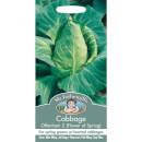 Cabbage Offenham 2 Flower Of Spring (Brassica Oleracea Capitata) Seeds