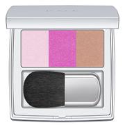 RMK Colour Performance Cheek Blusher - Ex-02