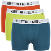 Lote de 3 bóxers Animal Block - Hombre - Multicolor