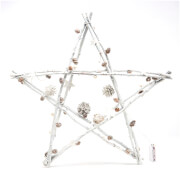 Bark & Blossom Twig Star - White