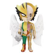 Figurine Hawkgirl DC Comics XXRAY Wave 5
