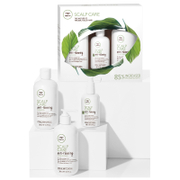 Paul Mitchell Tea Tree Scalp Care Anti-Thinning Regimen Kit