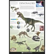 Dorling Kindersley Dinosaurs - 61 x 91.5cm Maxi Poster