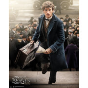 Fantastic Beasts and Where to Find Them Newt Scamander - 40 x 50cm Mini Poster