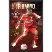 Liverpool Firmino 15/16 - 61 x 91.5cm Framed Maxi Poster