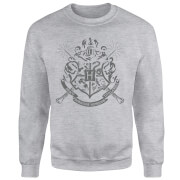 Sweat Homme Draco Dormiens Nunquam Titillandus - Harry Potter - Gris