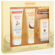 Burt's Bees The Hive Collection Gift Set