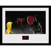 IT Float Framed Photograph 12 x 16 Inch