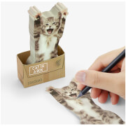 Cat in a Box Sticky Notes