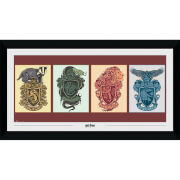 Harry Potter House Animals Collector's 50 x 100cm Framed Photograph