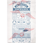 Harry Potter Quidditch At Hogwarts Maxi Poster 61 x 91.5cm
