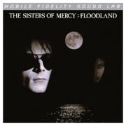 Floodland Vinyl