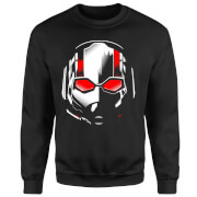 Ant-Man And The Wasp Scott Mask Sweatshirt - Black