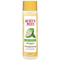 Burt's Bees Mer Moisture Shampoo - 10 oz