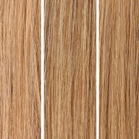 Beauty Works 100% Remy Colour Swatch - Blonde pakke