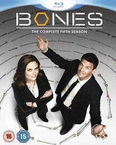 Bones - Seizoen 5