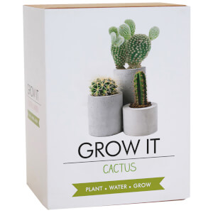 Grow It Cactus Plant
