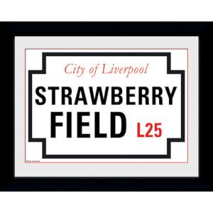 Strawberry Field - 8