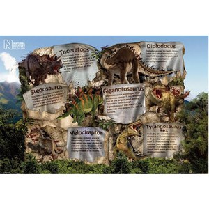 Natural History Museum Dinosaur Facts - 24 x 36 Inches Maxi Poster