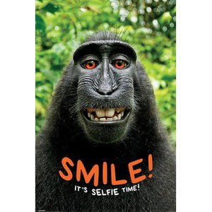 Smile Its Selfie Time Monkey - 24 x 36 Inches Maxi Poster
