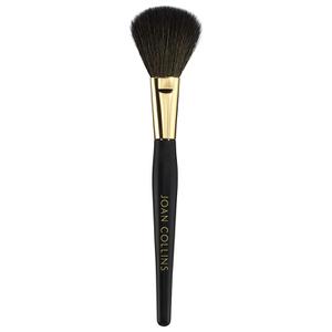 Joan Collins No.2 Blusher Brush