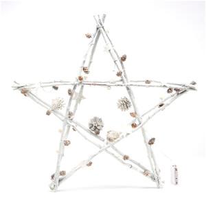 Bark & Blossom Twig Star - White