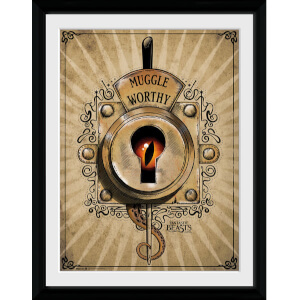 Fantastic Beasts Muggle Worthy Framed Album Cover - 12