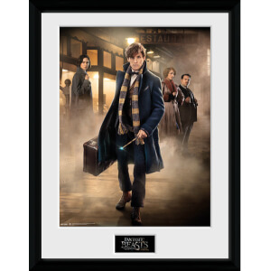 "Fantastic Beasts Group Stand Framed Album Cover - 12"""" x 12"""