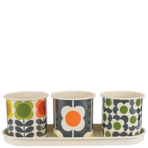 Orla Kiely 3 Herb Pots with Tray - Spot Flower Stem