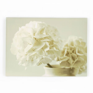 Art For The Home Tranquillity Floral Printed Cream Canvas