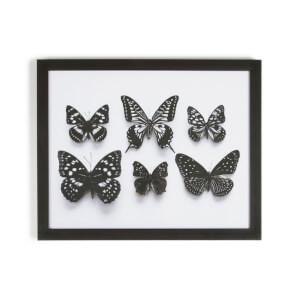 Art For The Home Botanical Butterflies Framed Print Wall Art