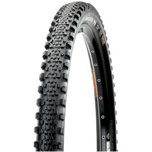 Maxxis Minion SS Folding EXO TR Tyre