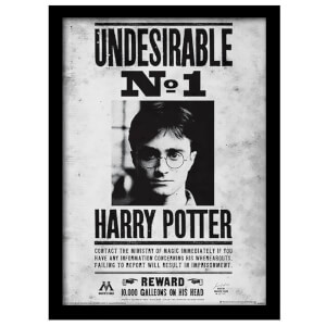Póster Harry Potter Indeseable N.º 1 - Enmarcado (30 cm x 40 cm)