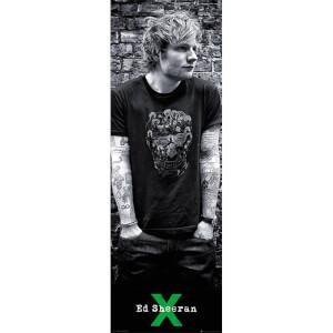 Ed Sheeran Skull - 53 x 158cm Door Poster