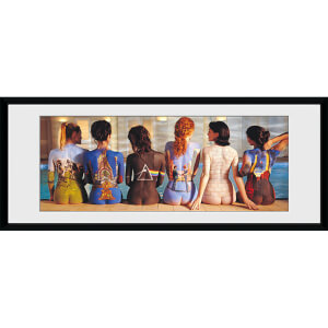 Pink Floyd Back Catalogue - 30 x 12 Inches Framed Photograph