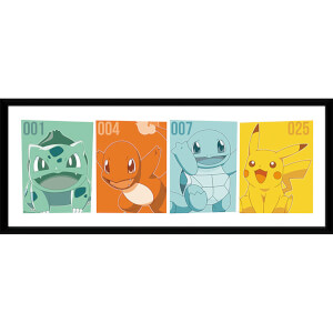 Pokémon Kanto Partners - 30 x 12 Inches Framed Photograph