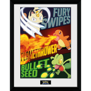 Pokémon Moves - 16 x 12 Inches Framed Photograph