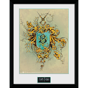 Harry Potter Beauxbatons Framed Photograph 12 x 16 Inch
